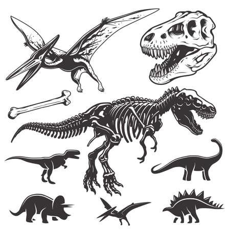 Set of monochrome dinosaurs. Archeology elements. T-rex skull and skeleton. Dinosaurs icons. Illustration