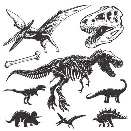 Set of monochrome dinosaurs. Archeology elements. T-rex skull and skeleton. Dinosaurs icons. Illustration