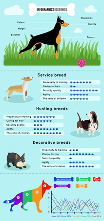 advantages: Dogs breed infographics types of dog breeds difference between them advantages and disadvantages percentage ratio and schedule vector illustration