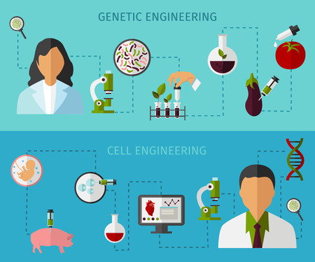 genetic engineering: Biotechnology colored banners set with description of genetic engineering and cell engineering vector illustration