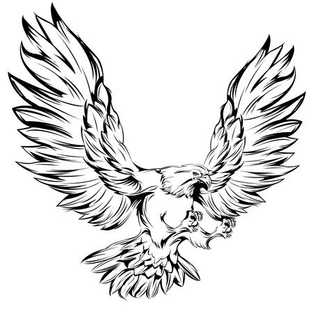 halcones: Águila monocromática durante el aterrizaje con las alas levantadas y las garras extendidas aislado sobre fondo blanco ilustración vectorial