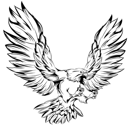 hawks: Monochrome eagle during landing with raised wings and outstretched talons on white background isolated vector illustration