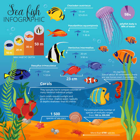 Sea life animals plants infographic with types of fish their sizes and descriptions vector illustration