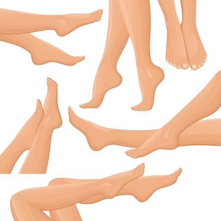female legs: Isolated beautiful female legs set in drawn realistic style on blank background flat illustration Illustration