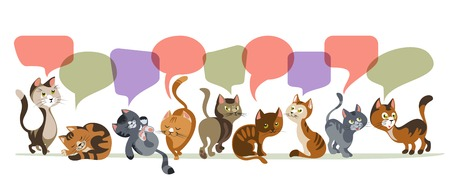 siamese: Funny cartoon style cats in a row and colorful comics speech bubbles composition on blank background illustration