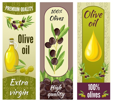 extra virgin olive oil: Three vertical isolated olive banner set with premium quality extra virgin olive oil descriptions illustration Illustration