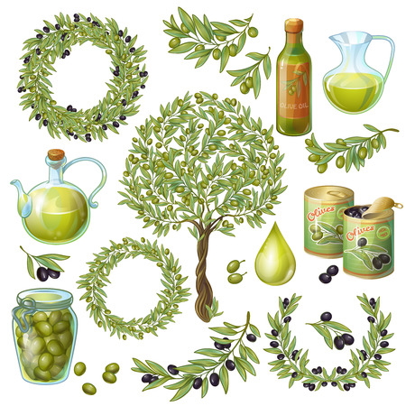 Isolated olive plant branches oil bottles cans and glass jars fruits leaves symbols on blank background illustration