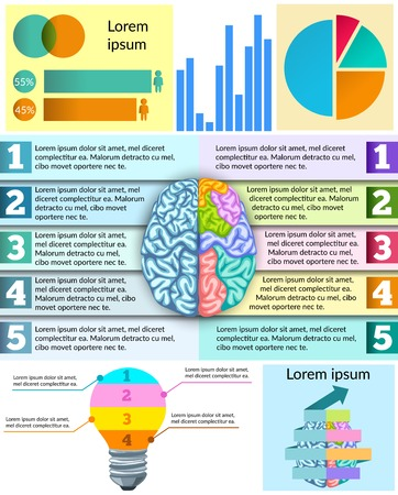 paragraphs: Creative brain infographic with graphs charts and diagram about mind elements and paragraphs illustration