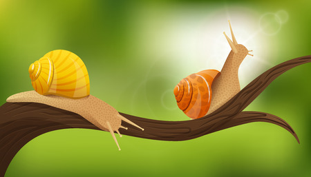 Nature composition with two realistic snails in the environment on tree limb with blurry green background illustration