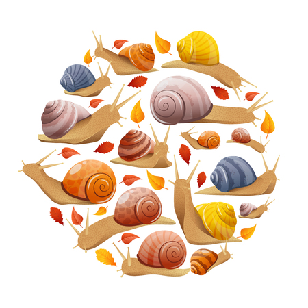 mollusc: Round composition with isolated autumn leaves and snails symbols of different behaviour size and shell colour illustration