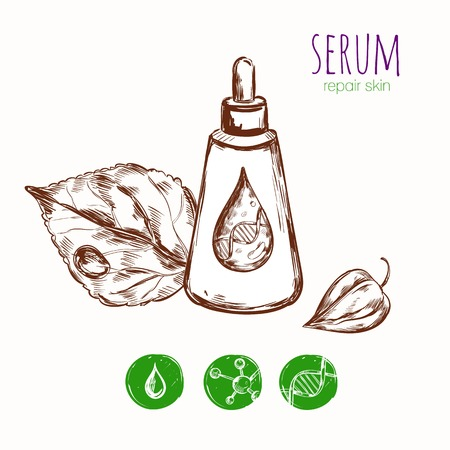Serum cream skin repair concept with sketch images of package leaves detailed drop and molecule icons illustration