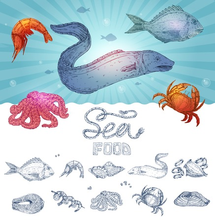 Seafood hand drawn concept with underwater life design and set of monochrome icons isolated illustration