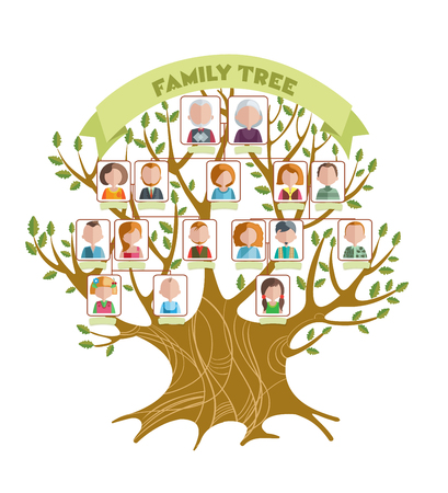 relatives: Concept of family tree with green ribbon and pictures of relatives on branches with leaves illustration