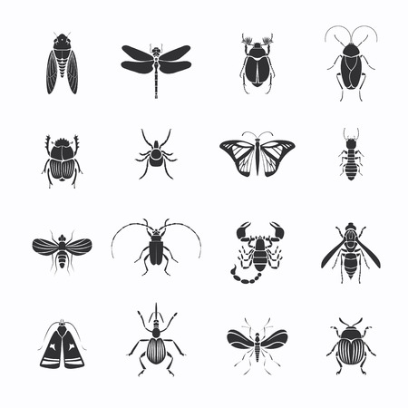 Monochrome Insects Silhouettes Set Illustration