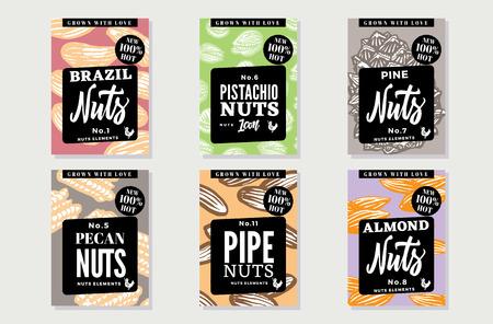 brazil nut: Sketch Natural Healthy Food Posters Illustration