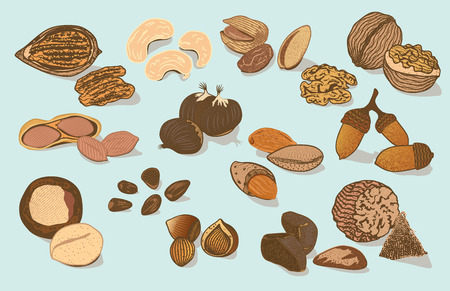 Colorful Natural Organic Nuts Collection