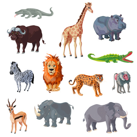 Cartoon African Animals Set