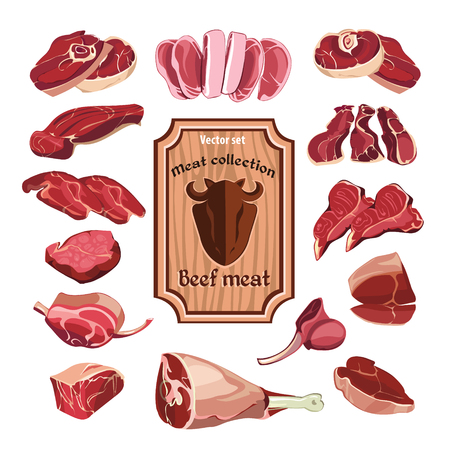 Hand drawn meat elements set with colorful different parts of cutting beef isolated vector illustration Illustration