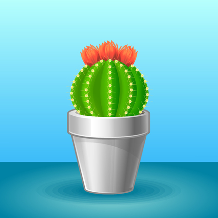 Organic exotic plant concept with blooming sharp cactus in flowerpot on light background isolated vector illustration Illustration