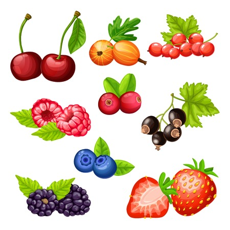 Colorful cartoon berries icons collection with cherry gooseberry strawberry cowberry cranberry bilberry blackberry currant raspberry isolated vector illustration Ilustração