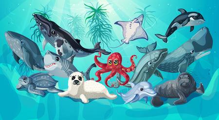 cachalot: Cartoon Sea And Ocean Life Template Illustration