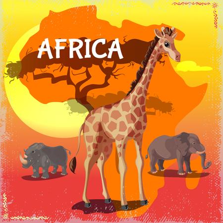 Cartoon Wild African Animals Concept