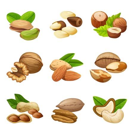 カラフルなナッツ コレクション  イラスト・ベクター素材