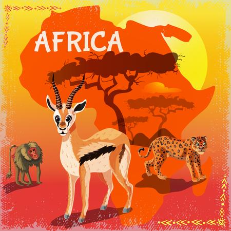 Cartoon African Fauna Template