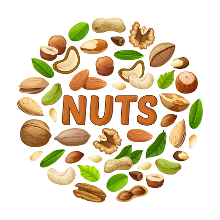 Cartoon Nuts Round Concept