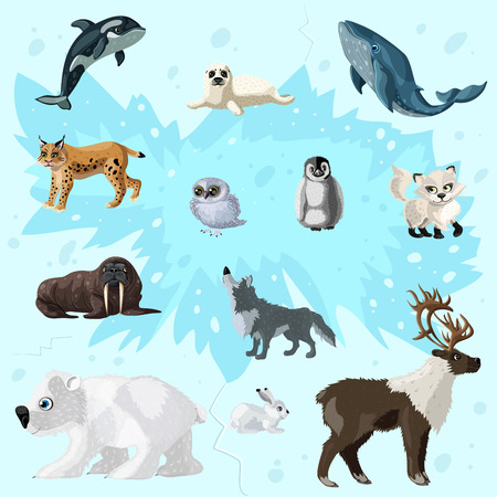 Cartoon Arctic Fauna Set