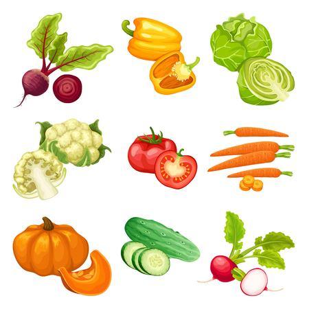 Cartoon Organic Vegetables Set Illustration