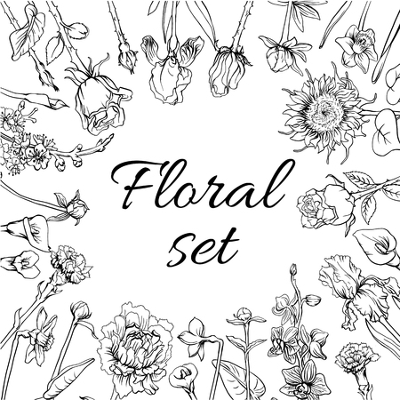 Vintage Monochrome Blossom Flowers Set