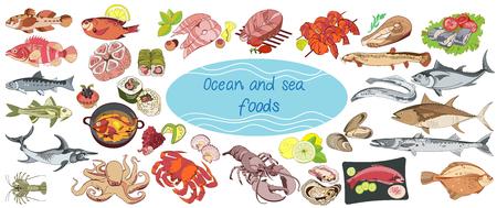 Bunte Zeichnung Marine Food Collection Standard-Bild - 76990081