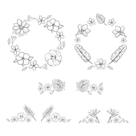 palm wreath: Sketch Monochrome Floral Exotic Plants Collection
