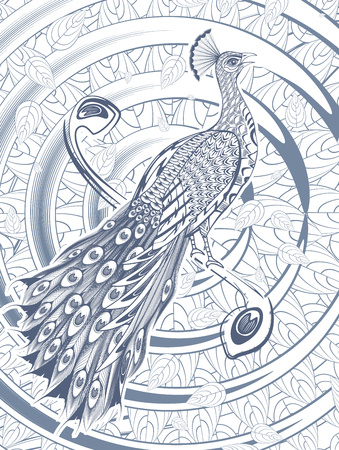 Hand Drawn Beautiful Peacock Template