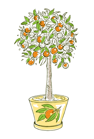 Colorful drawing citrus fruit concept with blooming orange tree in pot isolated vector illustration