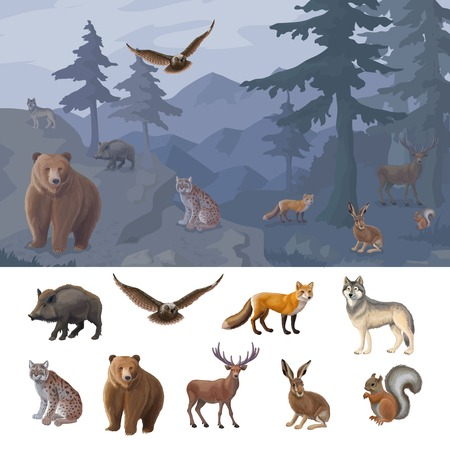 Cartoon Colorful Forest Animals Set