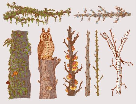 手描き林木セット  イラスト・ベクター素材