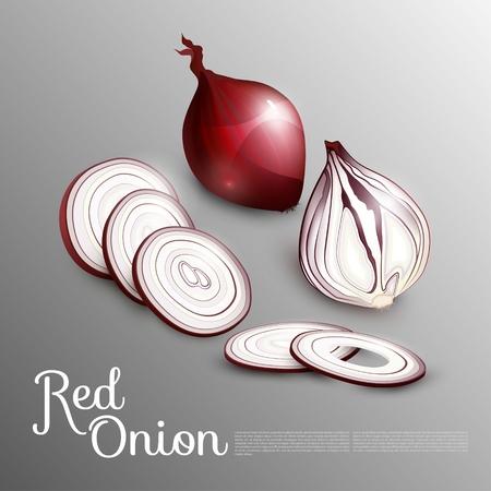 Natürliches rotes Zwiebelkonzept Standard-Bild - 78608052