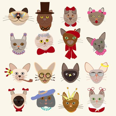 Colored cute cats heads set of different breeds wearing glasses hats bow ties feathers crown decorative elements isolated vector illustration Ilustração