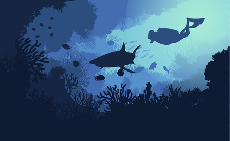 Marine underwater flora and fauna background with swimming diver shark fishes and seaweeds vector illustration