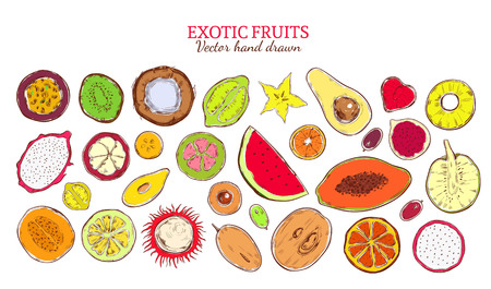 Colored sketch natural exotic products collection with fresh tropical fruits and berries isolated vector illustration. Illustration