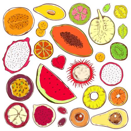 Hand drawn colored exotic products set with natural organic fruits and berries isolated vector illustration Illustration