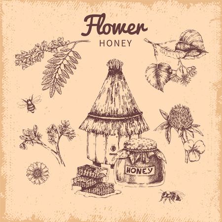 Flower Honey Hand Drawn Composition