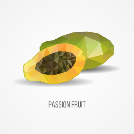Colorful Geometric Passion Fruit Concept Ilustrace