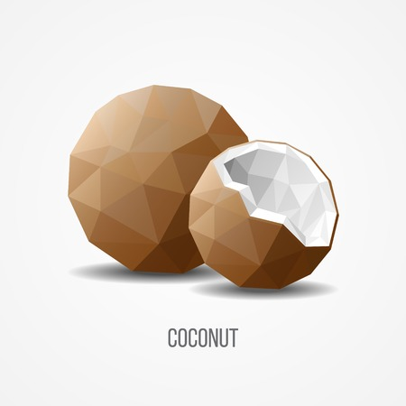 Colorful Sweet Natural Coconut Fruit Concept