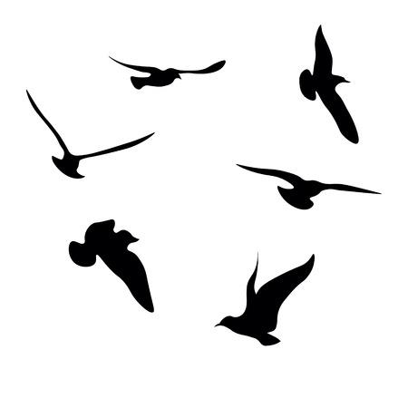 Colección de siluetas de gaviotas negras Foto de archivo - 80709628