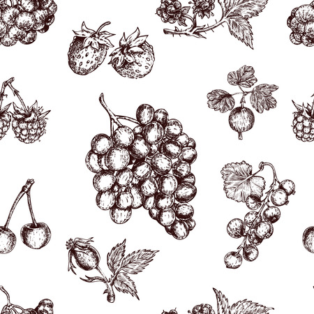 Berries Hand Drawn Seamless Pattern