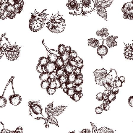 Berries Hand Drawn Seamless Pattern