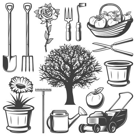 Vintage Garden Elements Collection Vettoriali
